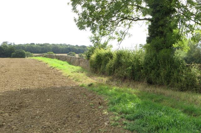 Wall along the field edge
