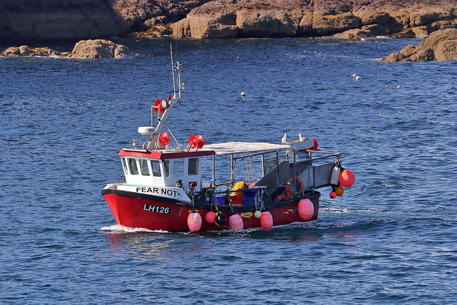 A lobster boat in Eyemouth Bay
