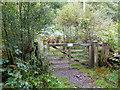 SH7710 : Gate on the path above Cwm Dulas by John Lucas