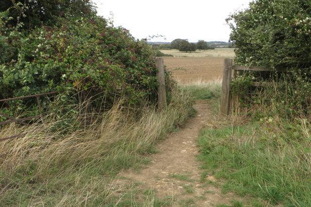 Bridleway to Purston