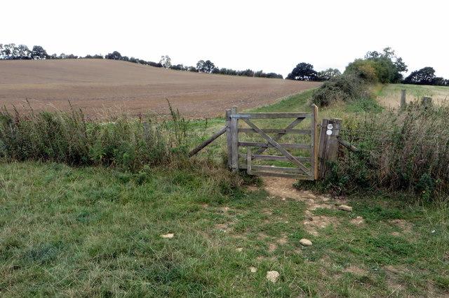 Bridleway to Buston Farm