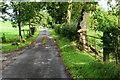H4767 : Drumragh Road, Drumconnelly by Kenneth  Allen