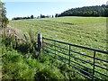 NJ6000 : Hilltop hayfield near Leyton by Stanley Howe