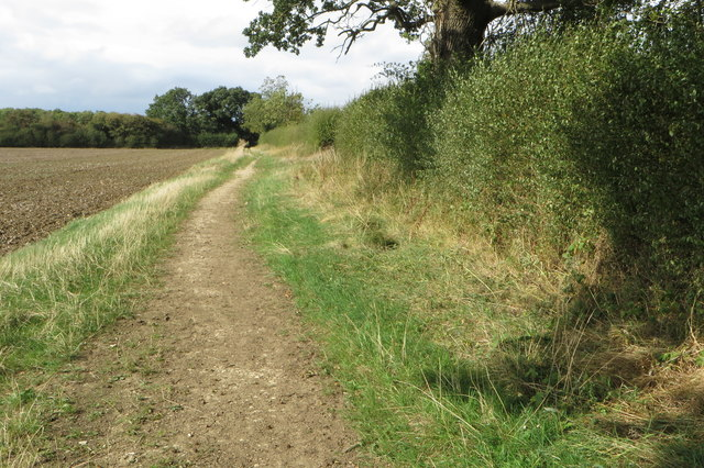 Bridleway to Great Purston