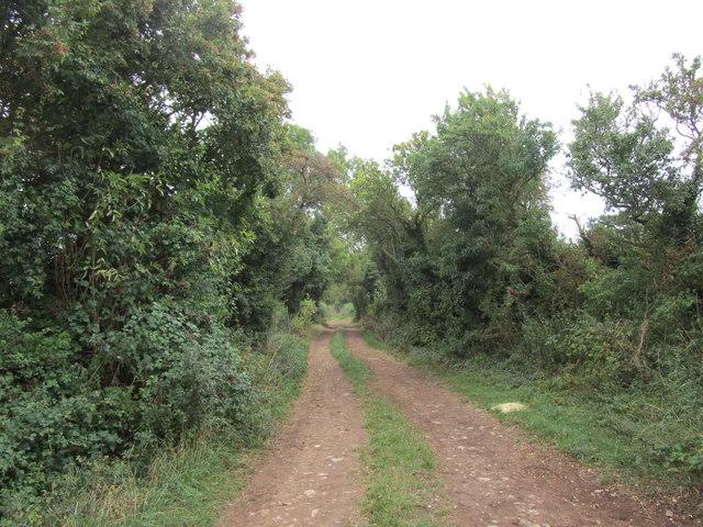 Bridleway to Morton Spirit Farm
