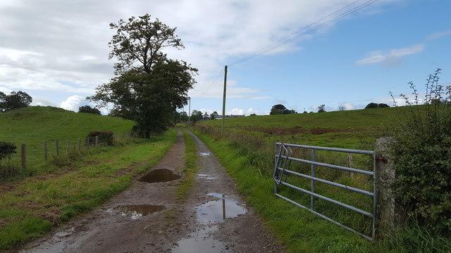 Track at Dryburgh Farm