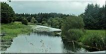 N3972 : River Inny by N Chadwick
