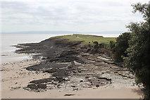 ST1166 : Little Island, Whitmore Bay by M J Roscoe