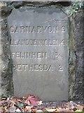 SH5968 : Milestone (Bethesda 2), Tregarth by Meirion
