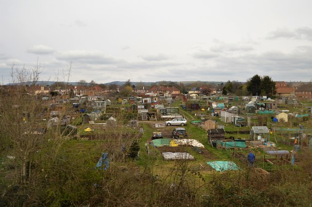 Allotments, Taunton