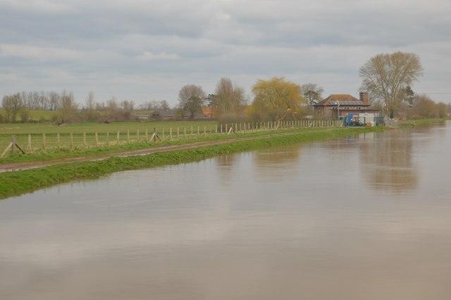 River Tone (in spate)
