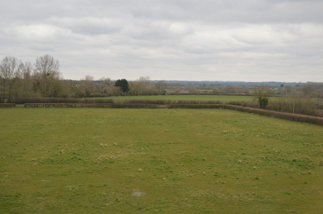 Field near East Lydford