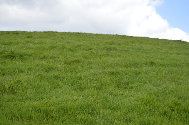 Grassy slope, Toll Point