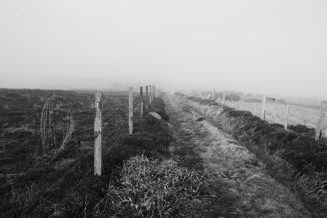 Peat road, Mossbank