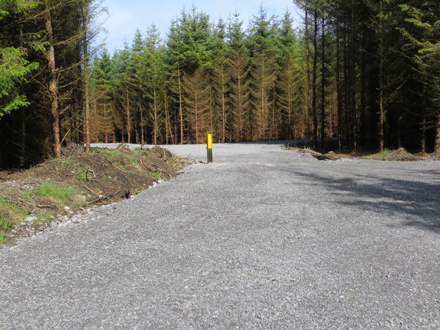 Recently created access into a forest located between Bohagh and Emlagh
