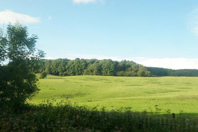Fields near Appley Bridge