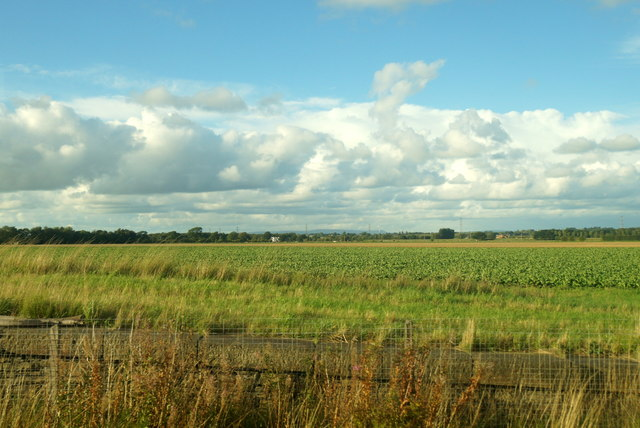 Fields at Hoscar