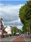 SO9199 : Waterloo Road in Wolverhampton by Roger  Kidd