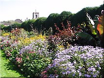 TG2309 : Herbaceous border in the Bishop's Garden by Evelyn Simak