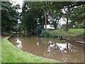 SJ6641 : Shropshire Union Canal by John H Darch