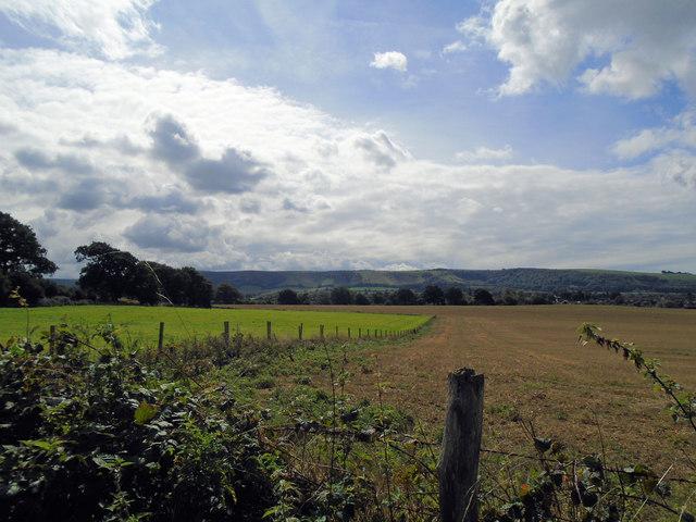 Ockley Manor Farm
