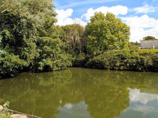 Pond at Ditchling