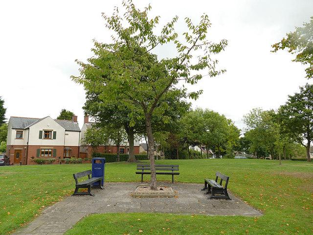 The Jubilee Tree, Bierley Marsh