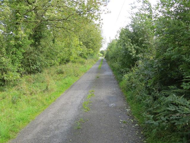 Hedge enclosed lane near Ardlagheen More
