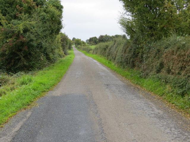 Hedge enclosed lane between Peak and Newtown