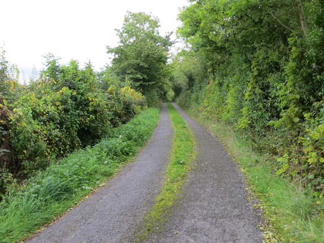 Local road L6535 near Shankoagh