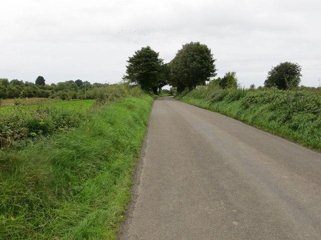 Lane between Rosmeen and Cloonykerny