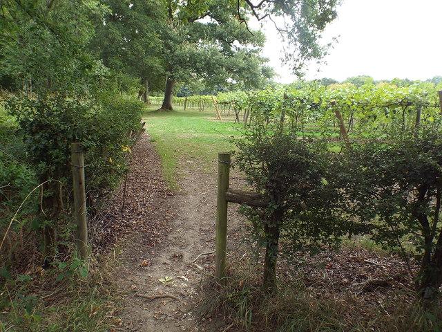 Public footpath near Penshurst