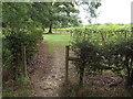 TQ5042 : Public footpath near Penshurst by Malc McDonald