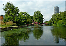SK5803 : The River Soar/Grand Union Canal in Leicester by Roger  Kidd