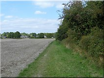 SU1659 : Towards Swan Meadow by Michael Dibb