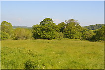 TQ5942 : Barnetts Wood Reserve by N Chadwick