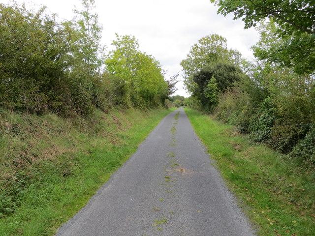 Hedge enclose local road (L1611) near Clooncah