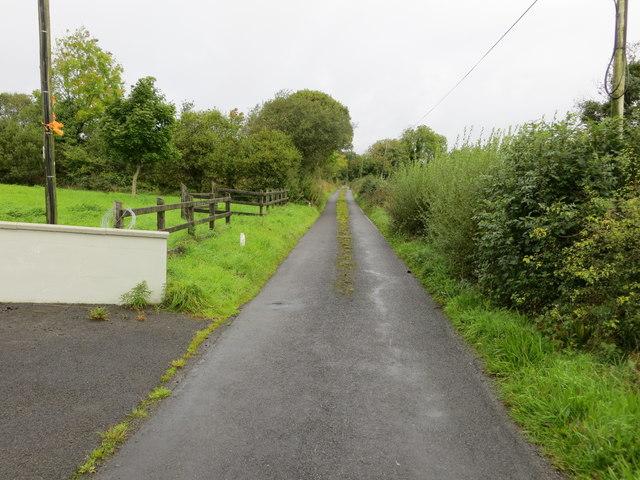 Lane near Marystown