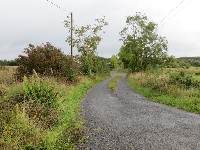 Lane between Castlefield and Slieve O'Flynn