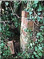 TL6068 : Remains of former Cement Works building by Jay Haywood