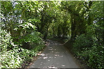 TQ5942 : Powdermill Lane by N Chadwick