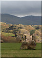 NY3022 : Low Rigg from Castlerigg Stone Circle : Week 37