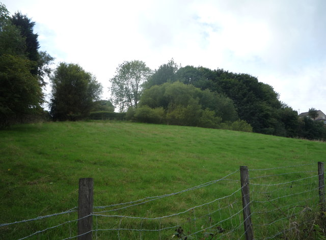 Grazing and woodland off Turton Road, Tottington