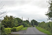 N5565 : Loughstown Holiday Home Rd by N Chadwick