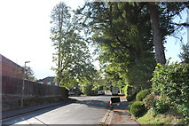 SU4830 : Abbotts Road, Abbott's Worthy by David Howard