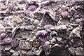 NT1168 : Amethyst wall, Jupiter Artland by Jim Barton
