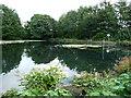 SD7817 : Pond outlet, off Springwood Street, Ramsbottom by Christine Johnstone