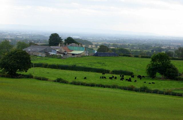 Halliwell Farm near Heighington