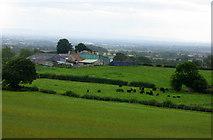NZ2322 : Halliwell Farm near Heighington by pam fray