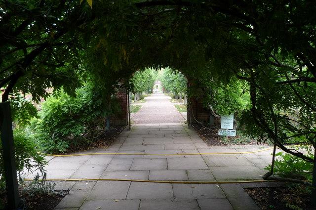 Arches at Hampton Court Gardens (Hope-Under-Dinmore)